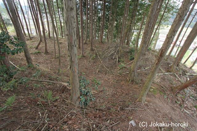 安芸・駿河丸城 写真館(1/2)(城...
