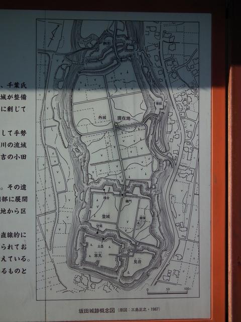 上総・坂田城(城郭放浪記)